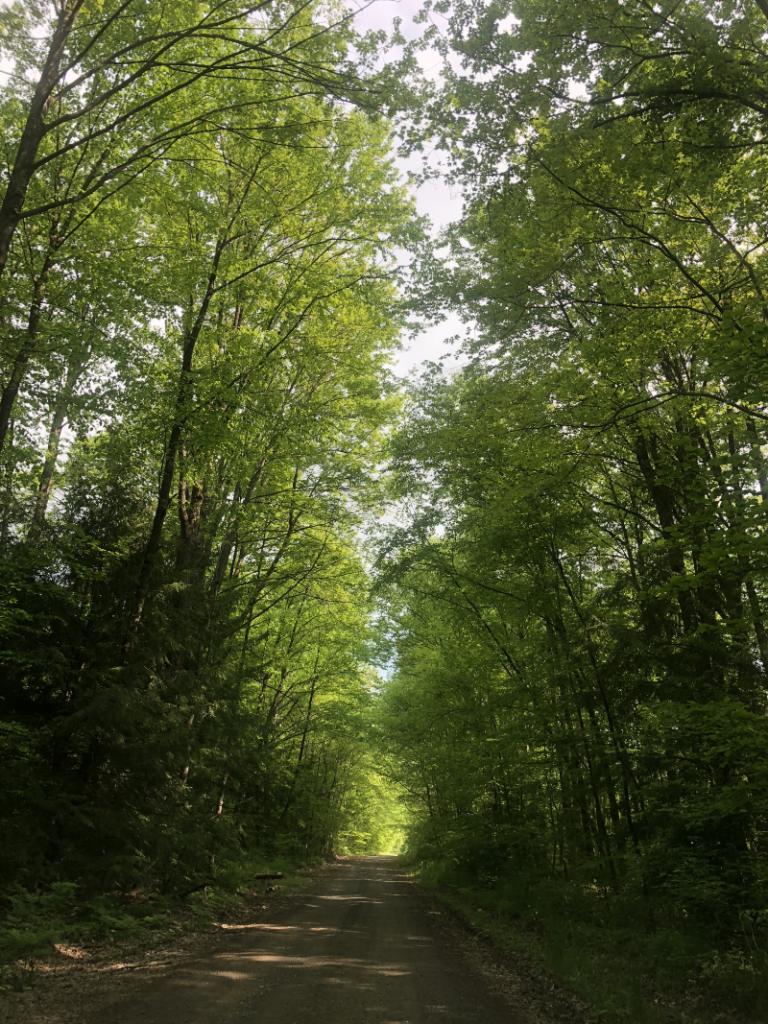 Keystone Road